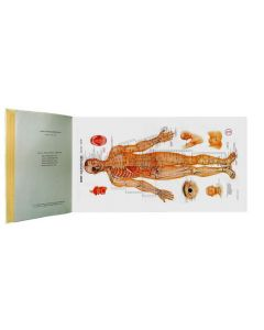 Acupuncture Charts in Book Form